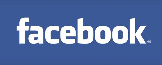 Styrumer Löwen bei Facebook